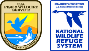 KangoMedia Art - Logo USFWS and NWRS