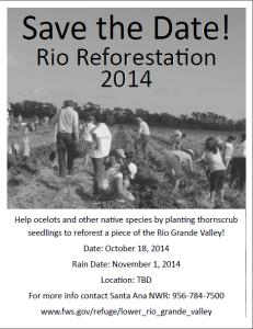 Rio Reforestation 2014