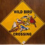 SAF-1612-Wild Bird Sign